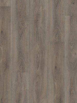 Wineo 600 Wood XL Designbelag Aumera Oak Grey Vinylboden...