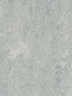 wmr2621-2,5 Forbo Marmoleum Real dove grey Linoleum...