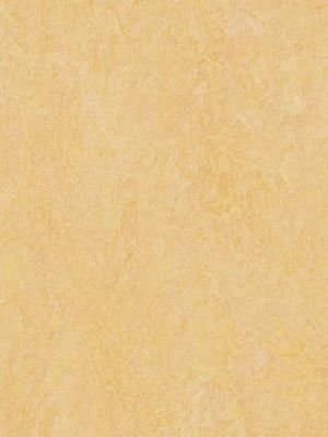 wmf3846-2,5 Forbo Marmoleum Fresco natural corn Linoleum...