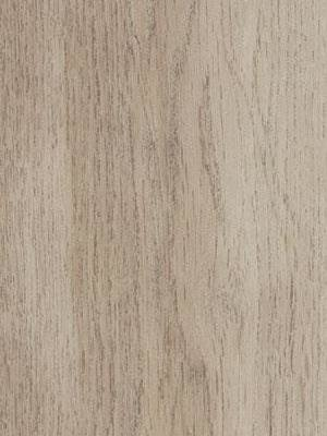 Forbo Allura 0.40 white autumn oak Domestic Designbelag...