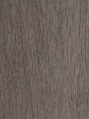 Forbo Allura 0.40 grey collage oak Domestic Designbelag...