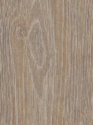 Forbo Allura 0.40 steamed oak Domestic Designbelag Wood...
