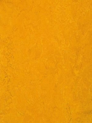 wmf3125-2,5 Forbo Marmoleum Fresco golden sunset Linoleum...